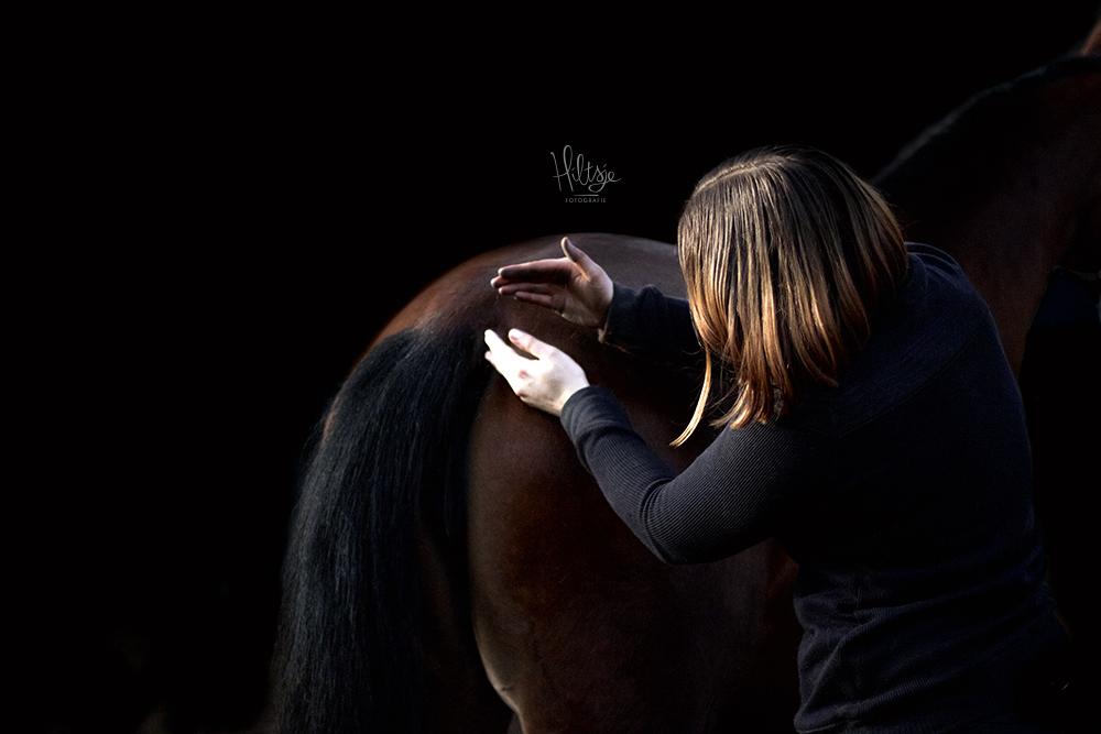 Equine Flex